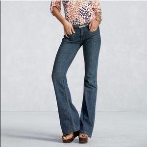 🌼CAbi Farrah Flare Jeans - Size 8
